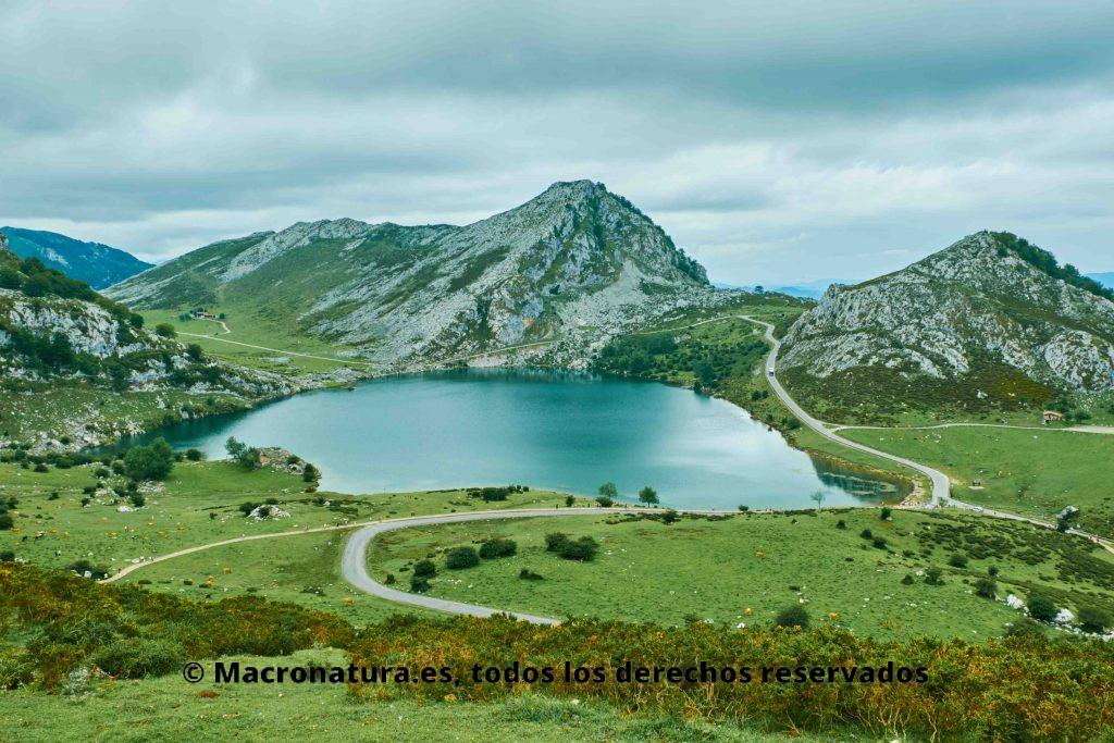 Lago Enol en Lagos de Covadonga Picos de Europa