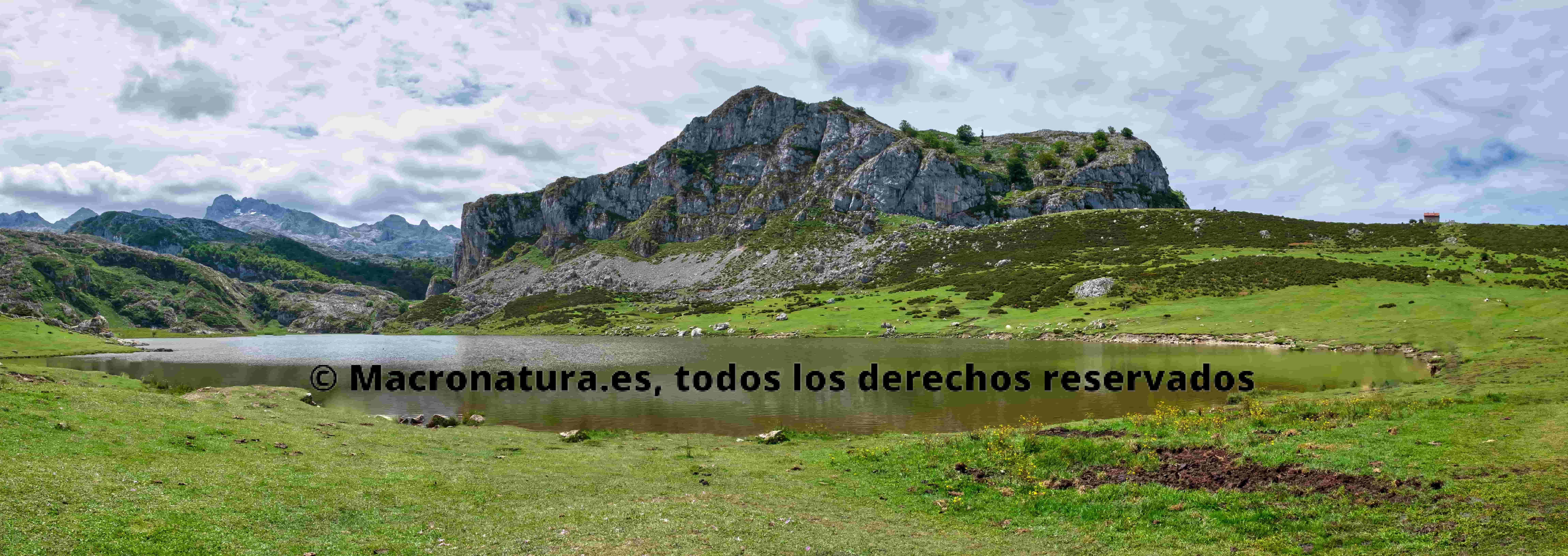 Panorámica de Lagos de Covadonga. Se observa el Lago Ercina en un día soleado con algunas nubes.