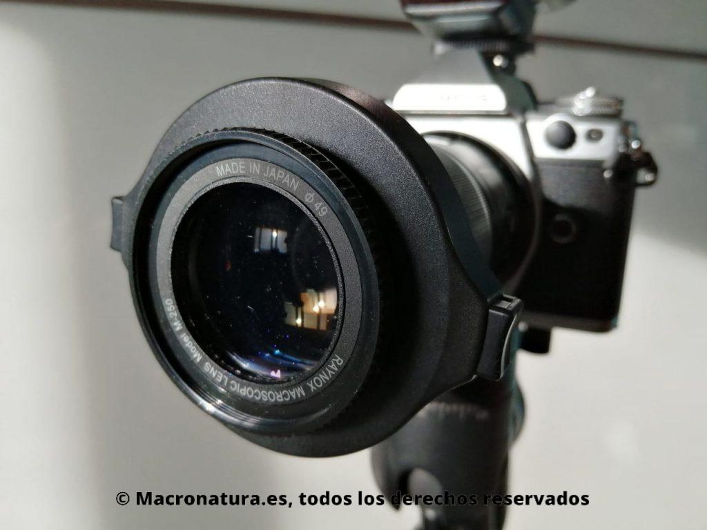 Una lente de aproximación montado en un objetivo macro. Raynox.