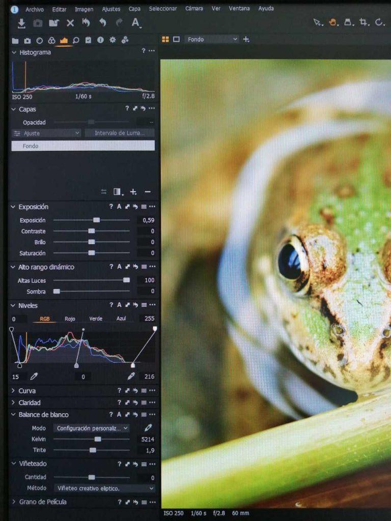 Editando fotografías macro en capture one.